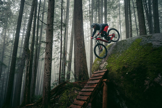 Mountain bikers ride electric bikes on a trail
